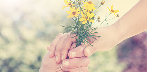 Caring-Hands-Flowers-2
